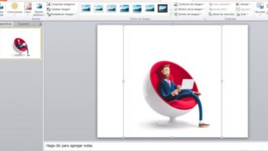 Photo of How to remove the background from an image in Photoshop or PowerPoint